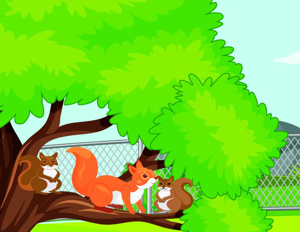 Der kleine Bruder mit zwei Eichhörnchen eine Geschichte für Kinder